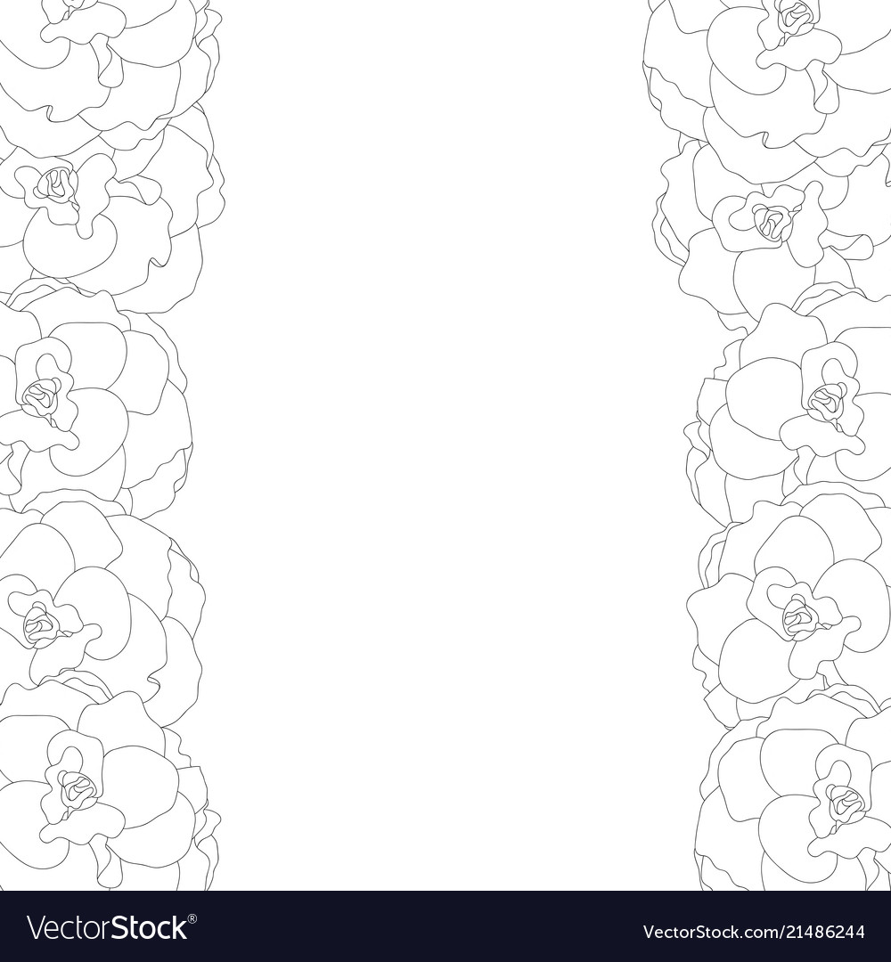 Begonia flower picotee outline border