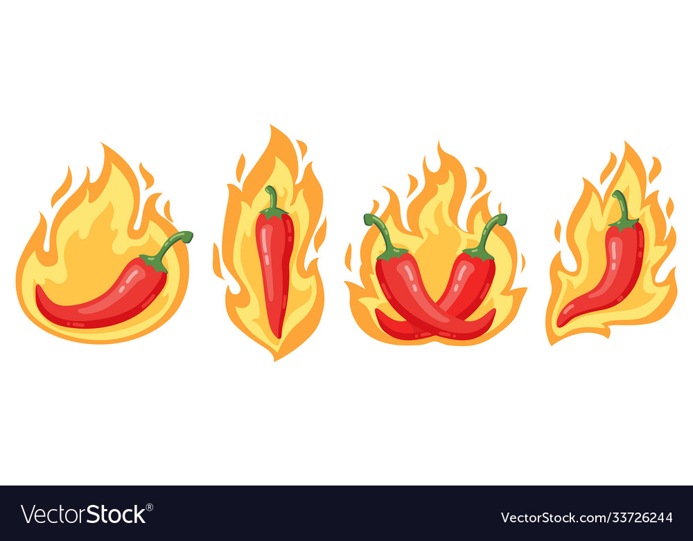 Hot chilli peppers cartoon spicy red chilli