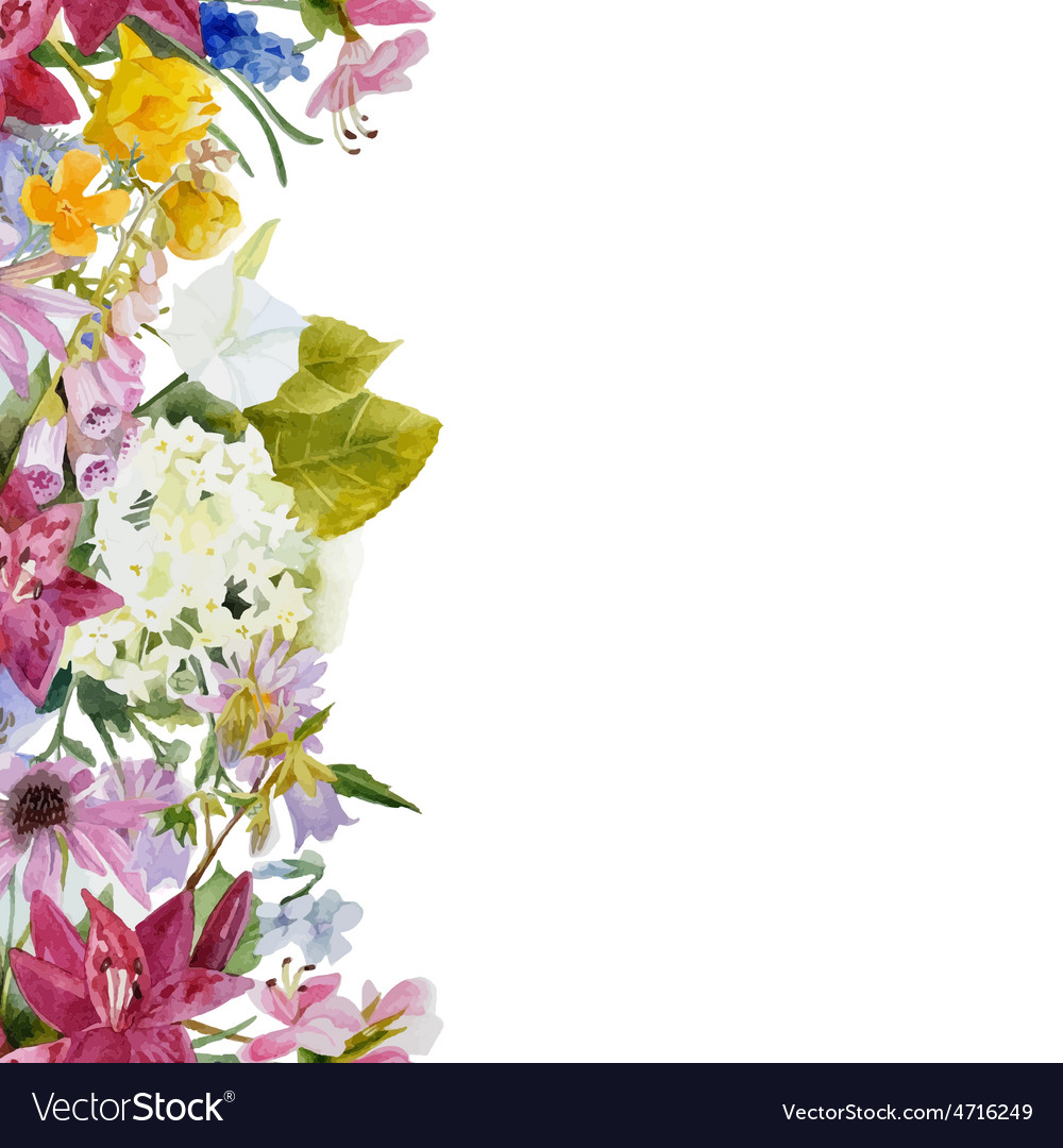 Watercolor Floral Seamless Border Royalty Free Vector Image