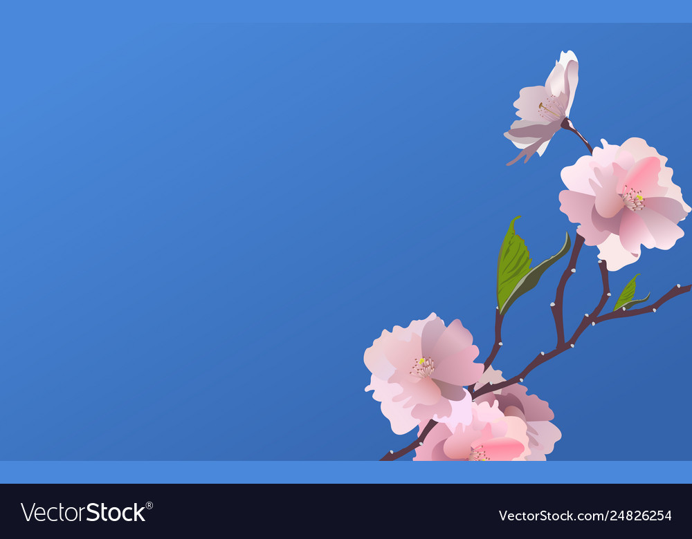 Fresh spring flowers background with frame