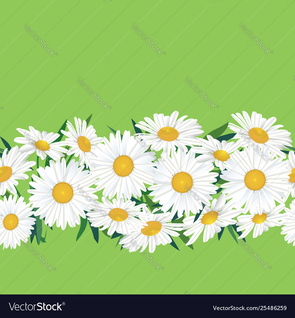 Abstract floral seamless pattern summer flower