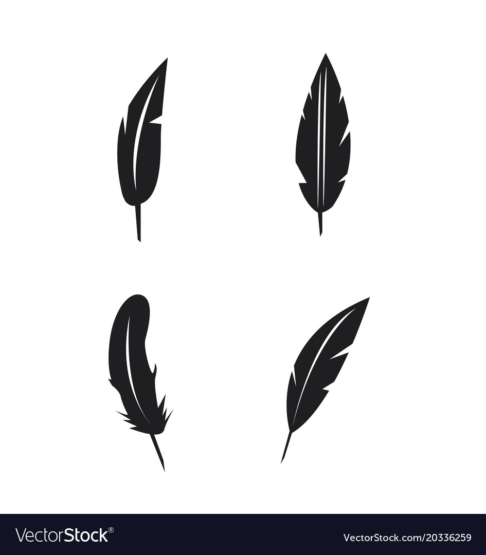 Feather icons set on white background vector image