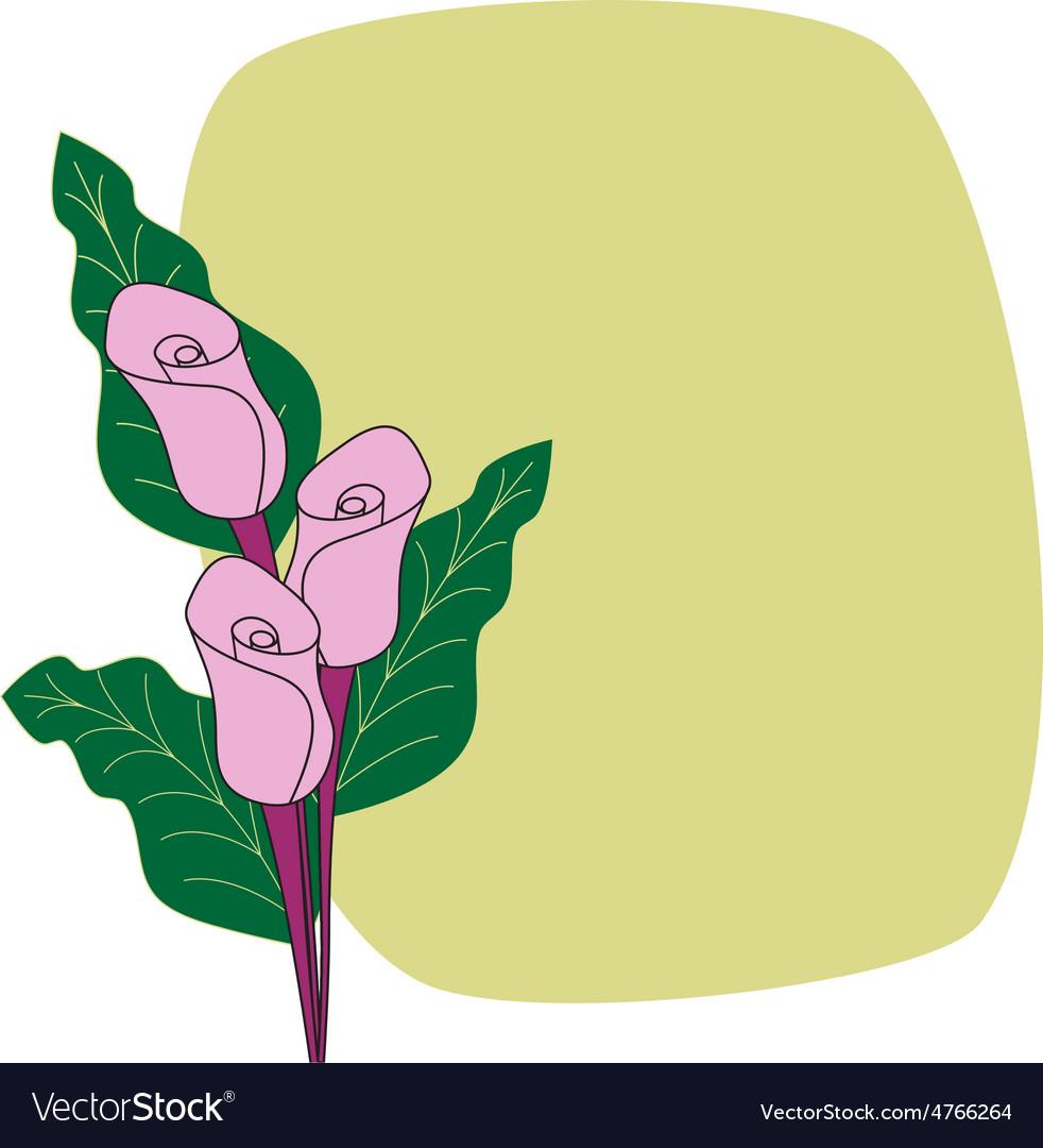 Calla Lilies Border Cardflower Card Royalty Free Vector