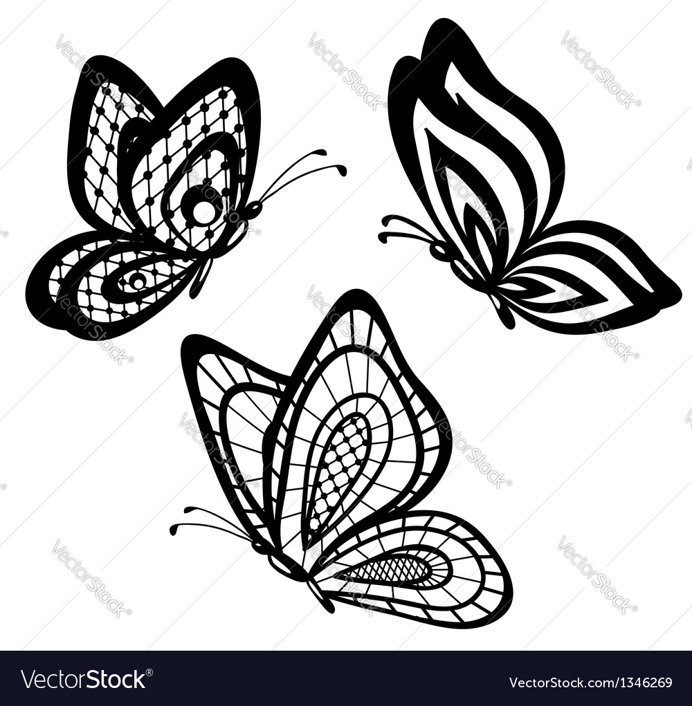 Set of beautiful black and white guipure lace butt vector image