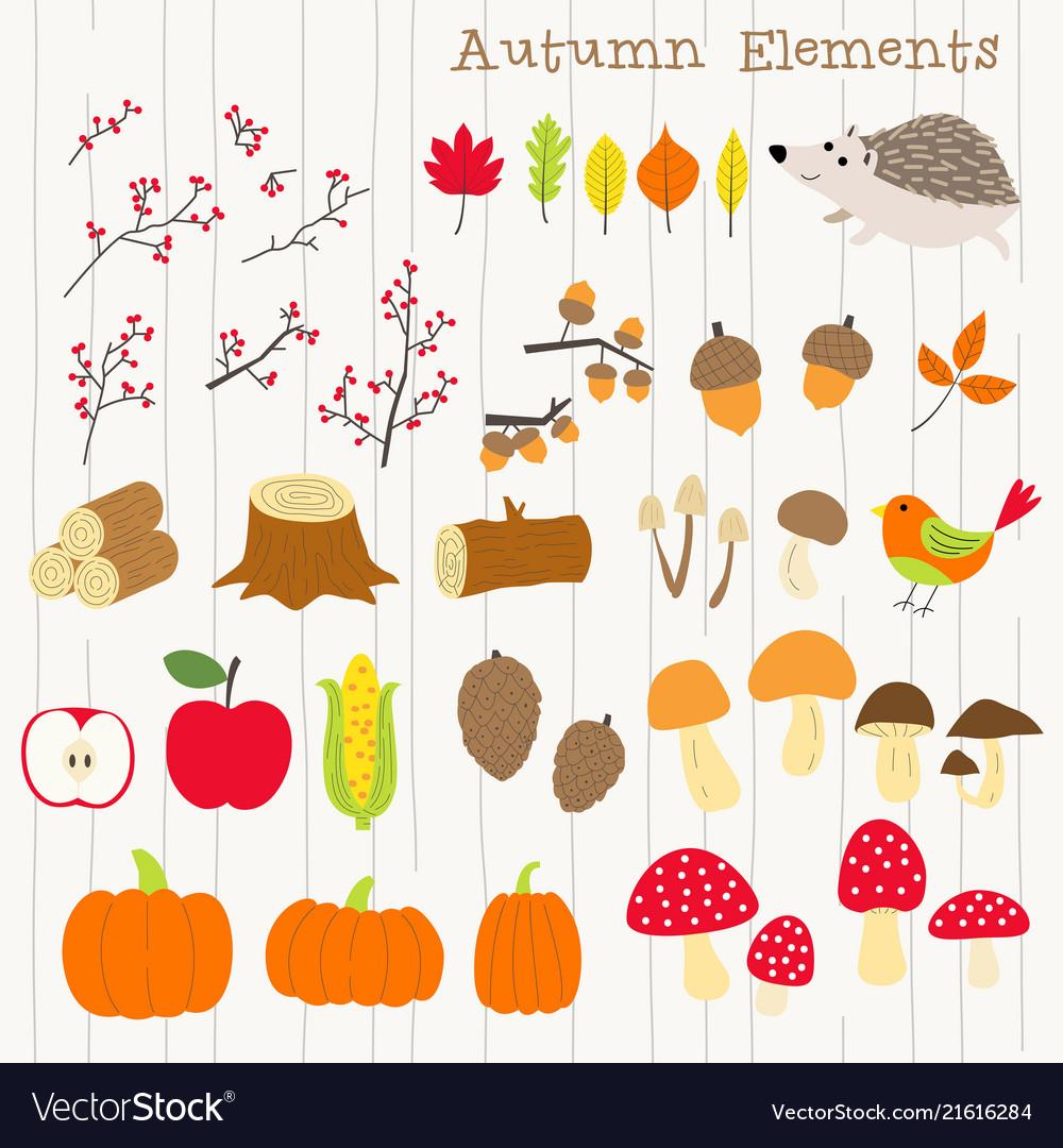 Colorful autumn decoration element set