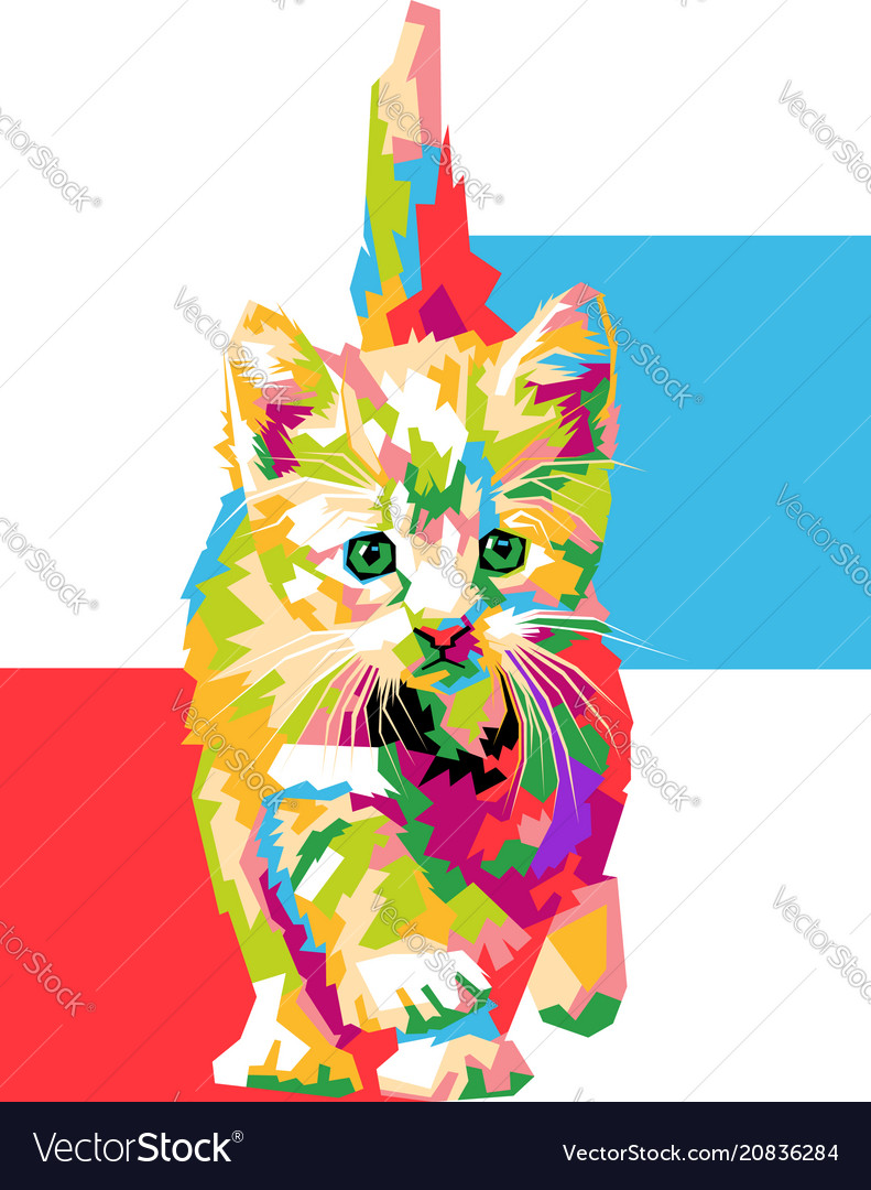 Cute and colorful cat