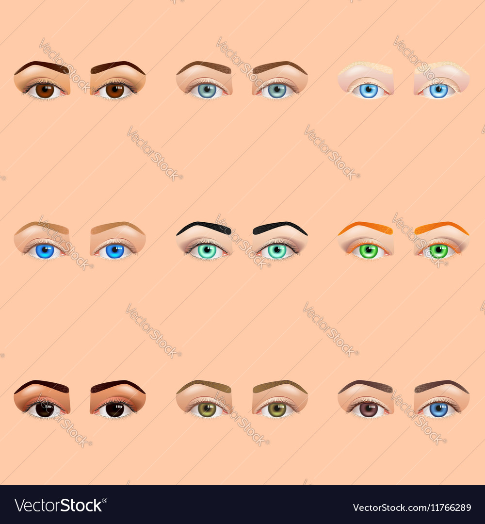 Female eyes and brows icons set