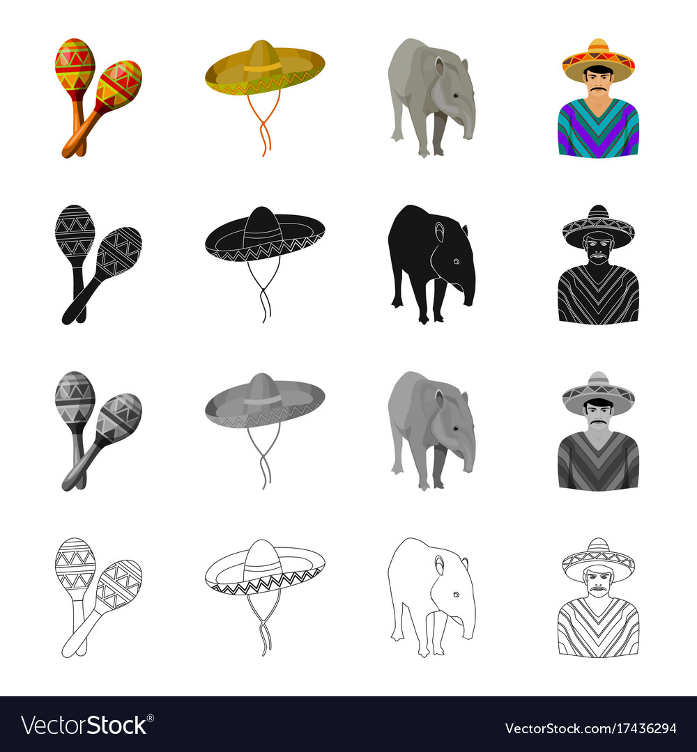 Maracas sombrero tapir mexican country mexico vector image