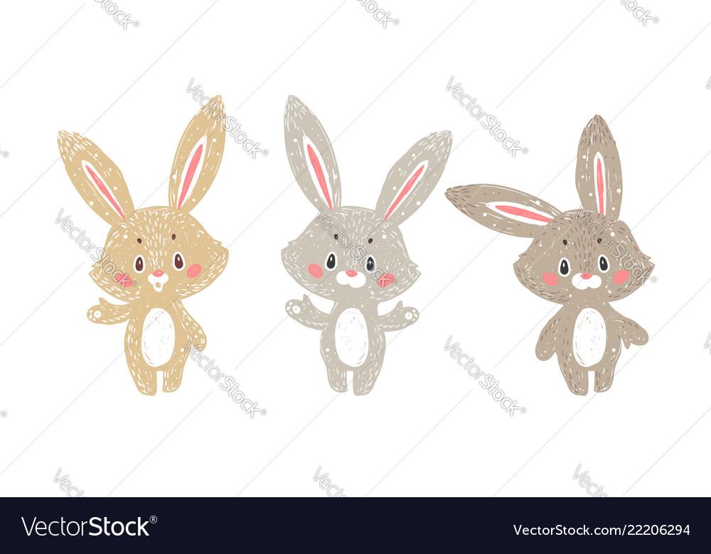 Set of bunnny