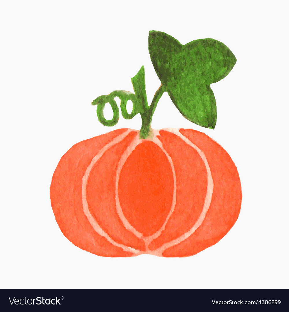 Hand-drawn pumpkin Real watercolor drawing vector image