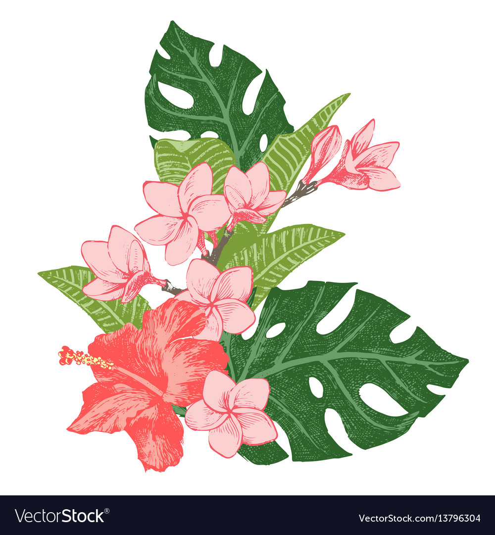 Bright exotic tropical flowers and leaves vector image