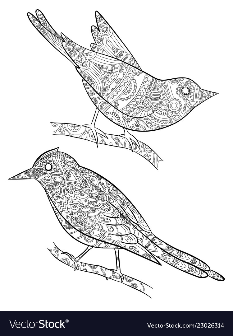 Coloring pages for adults little wild birds for