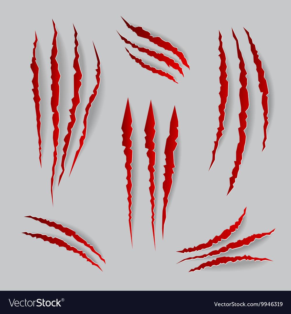 Cat claws marks set