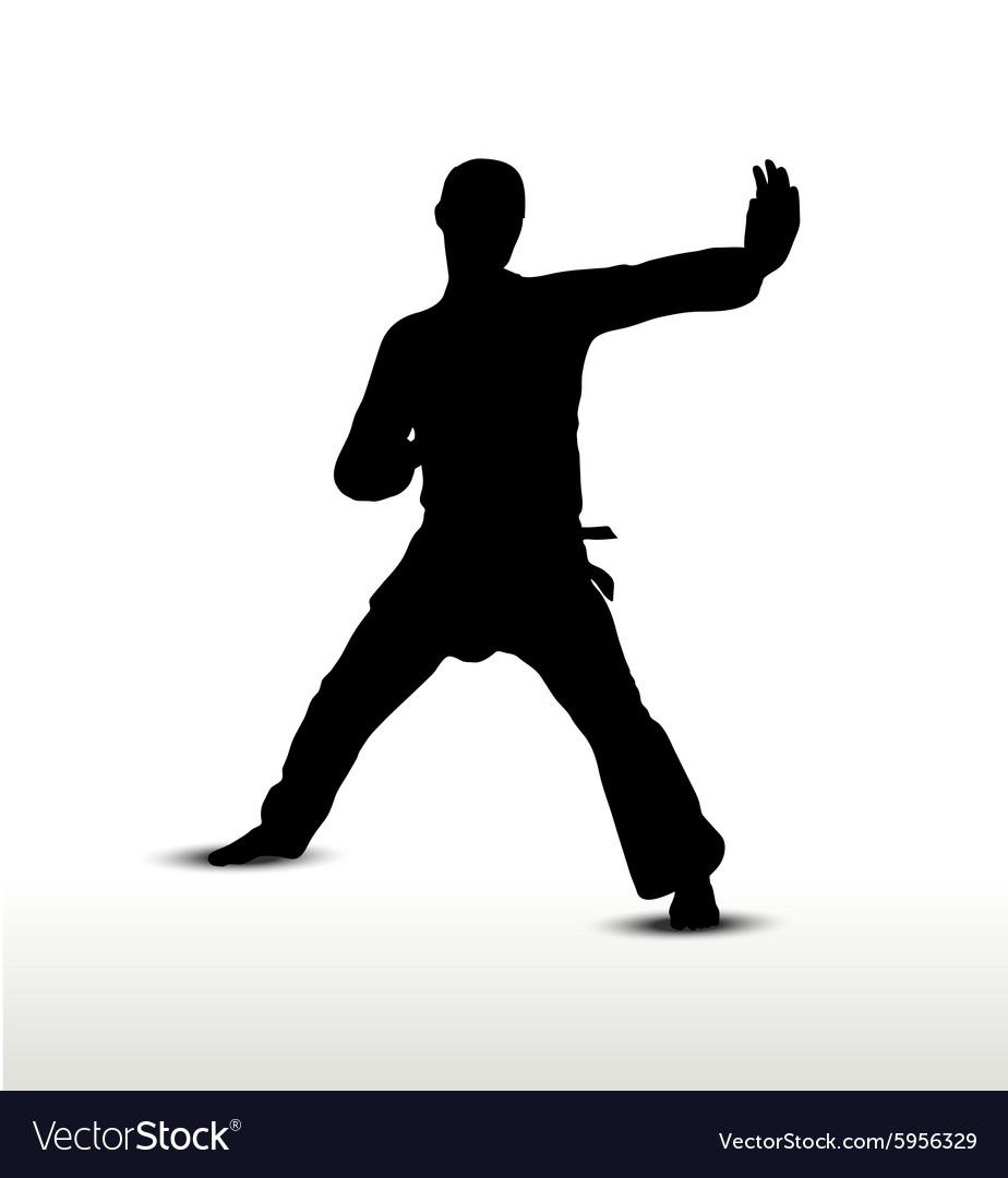 Karate silhouette vector image