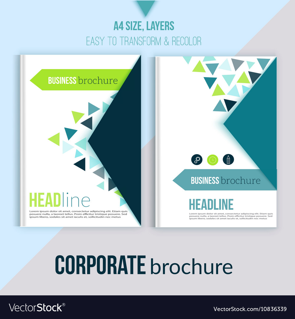 Clean Brochure design annual report cover vector image