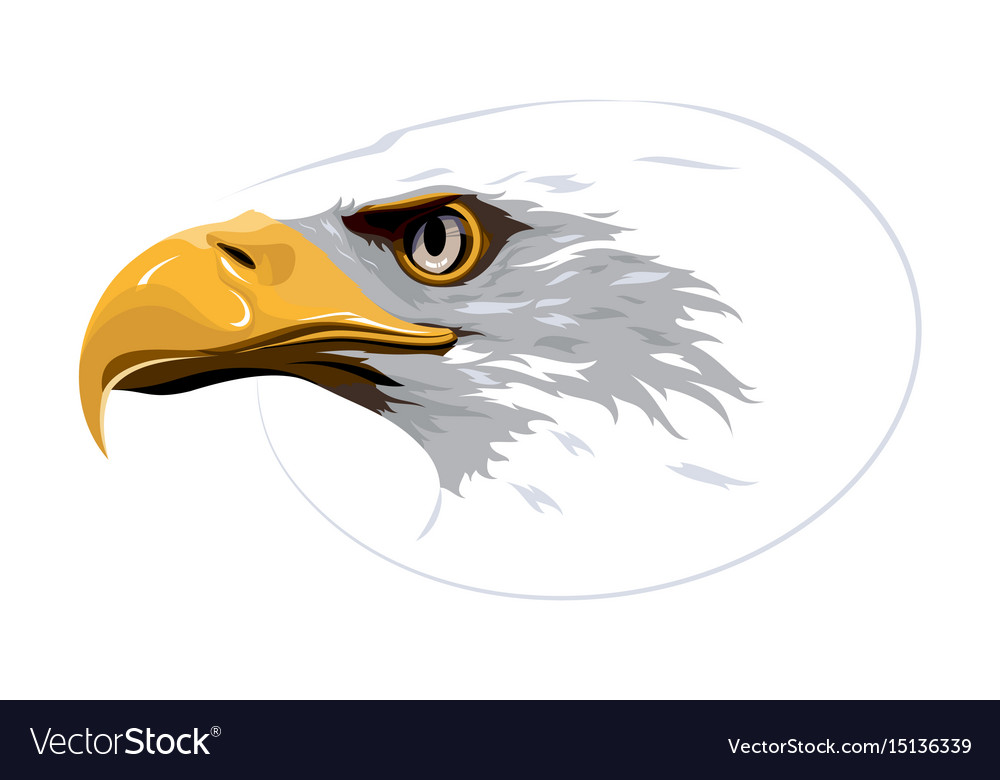 Design element eagle on white background
