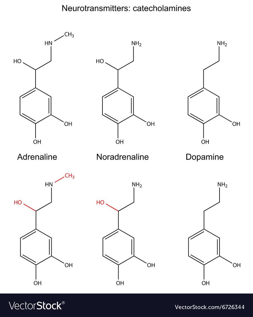 Structural chemical formulas of neurotransmitters