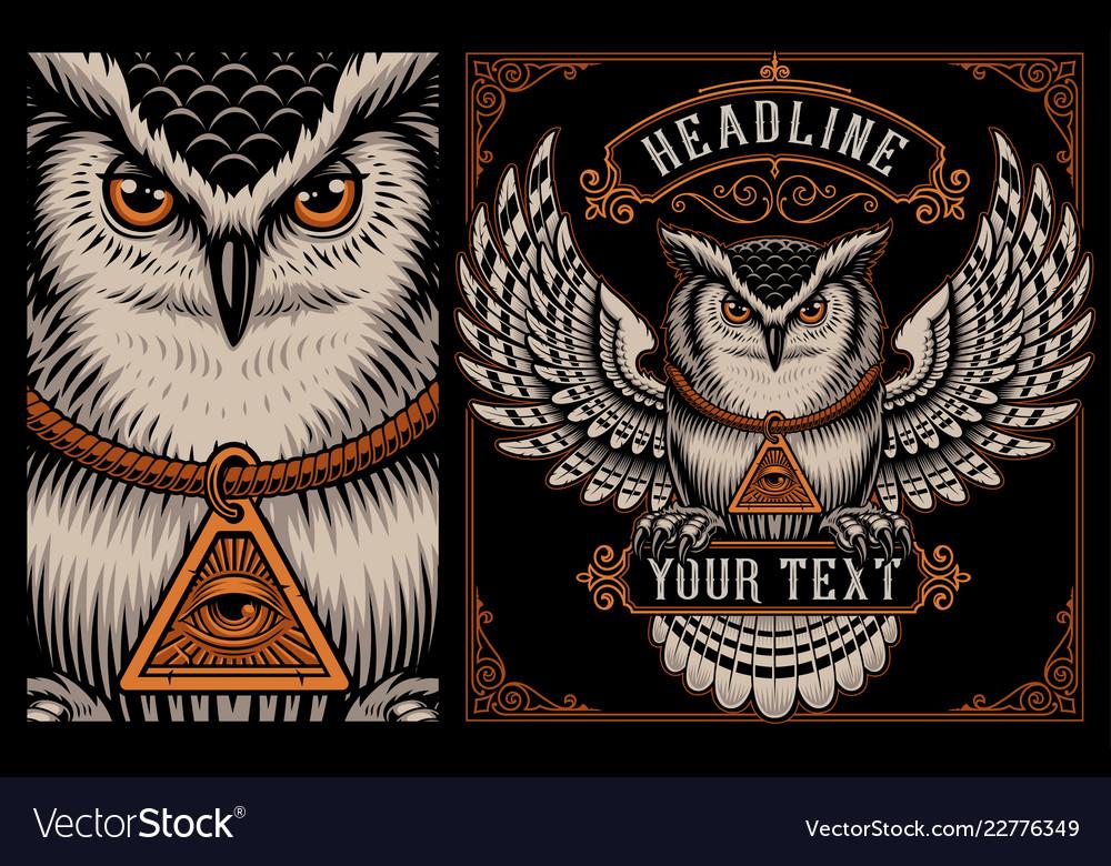 Owl on the dark background
