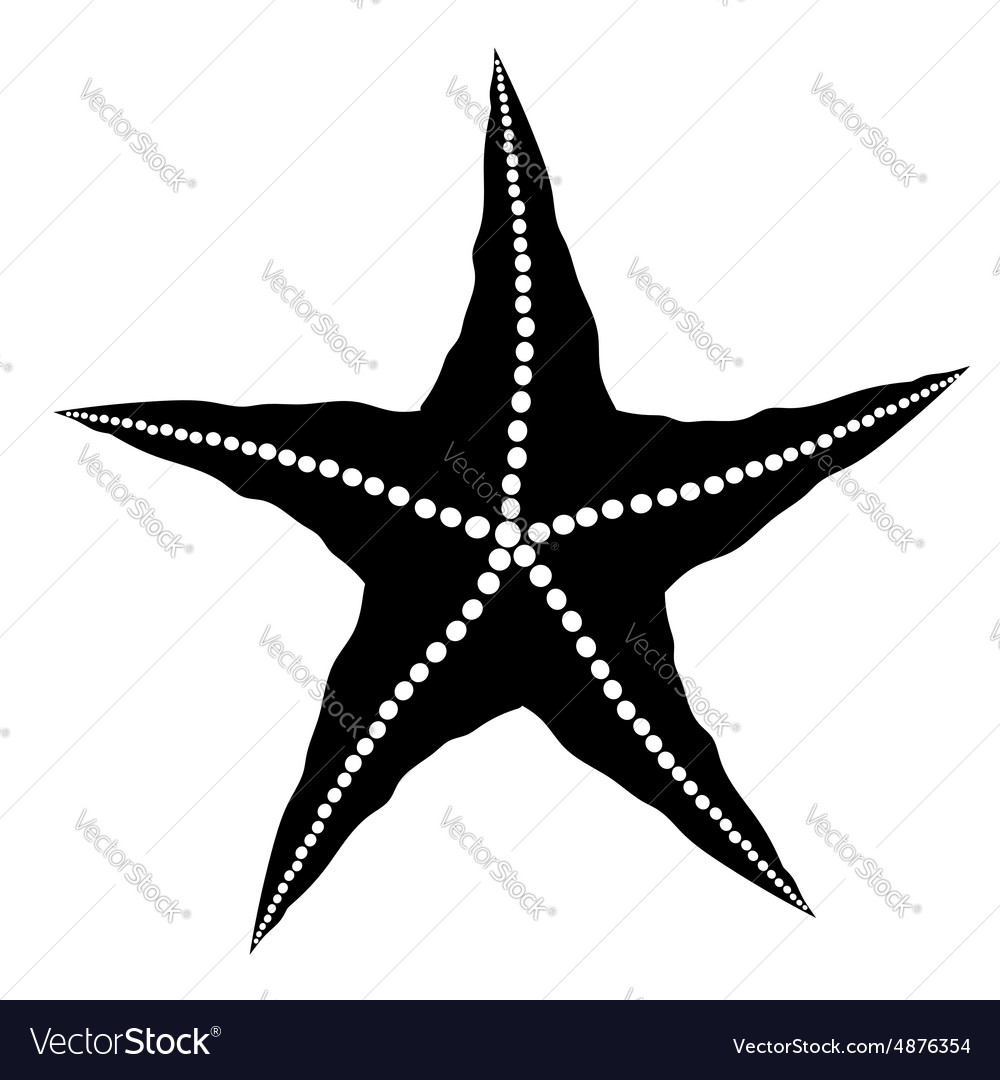 Silhouette of Starfish vector image