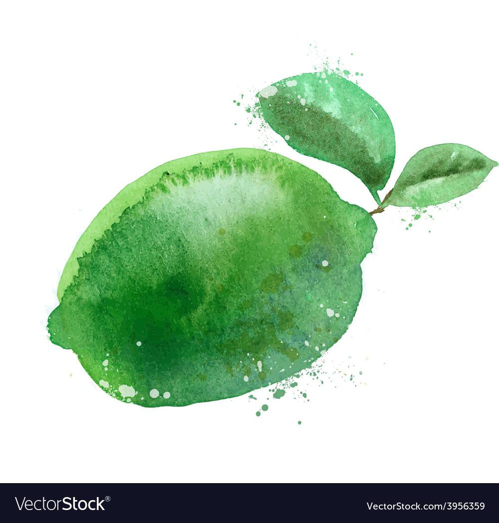 Lime logo design template fruit or food