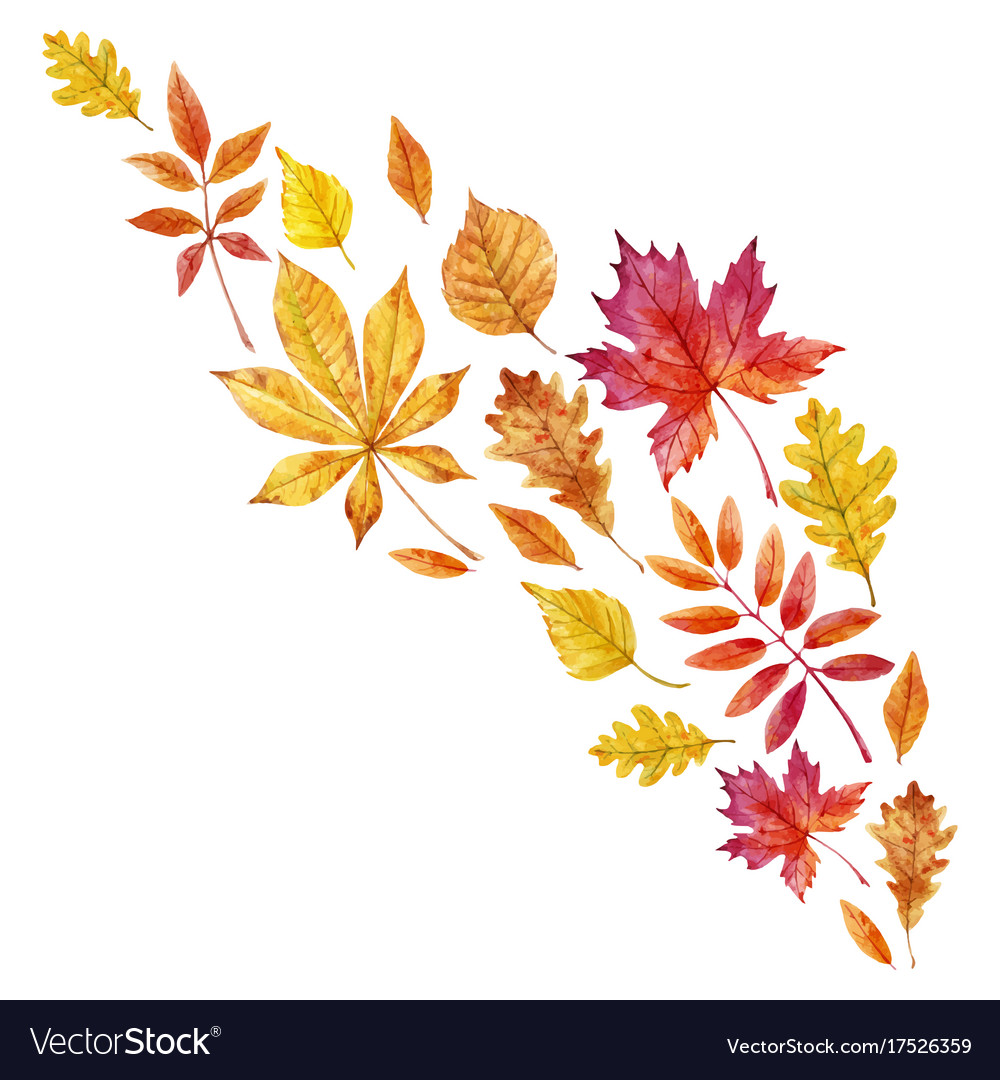 Watercolor Fall Leaves Set Royalty Free Vector Image