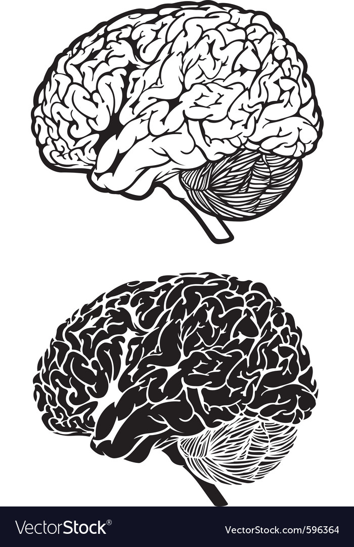 Human brain cartoon set