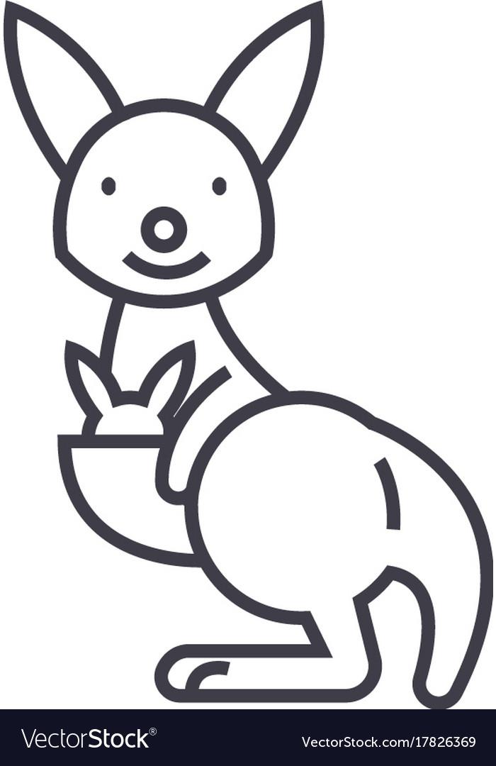 Cute kangaroo line icon sign