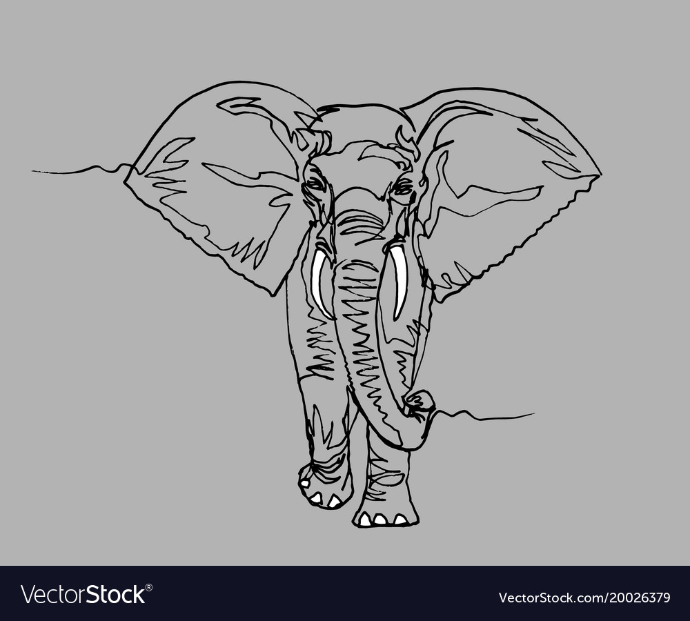 Elephant africa continuous line