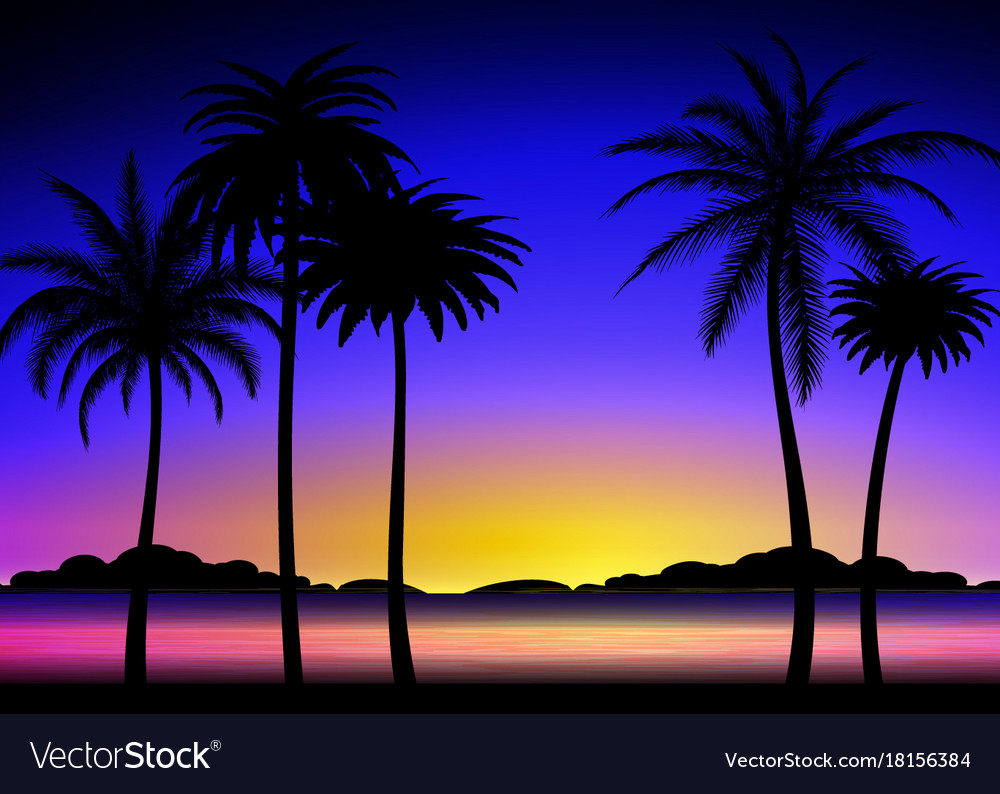 Silhouette of palms on tropical sunset