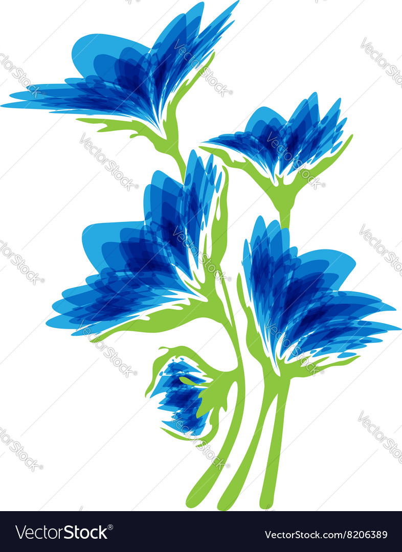 Blue flowers on a white background vector image