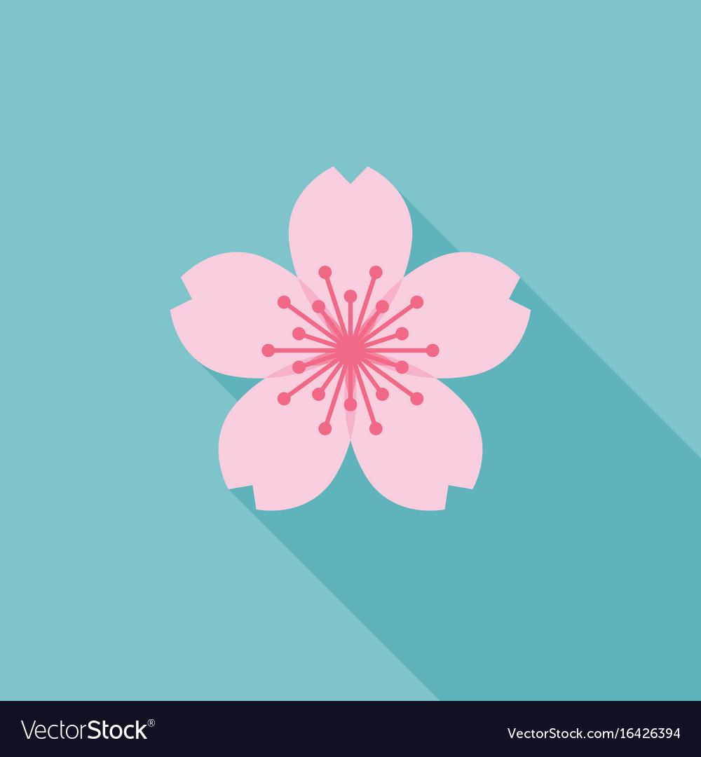 Sakura icon vector image