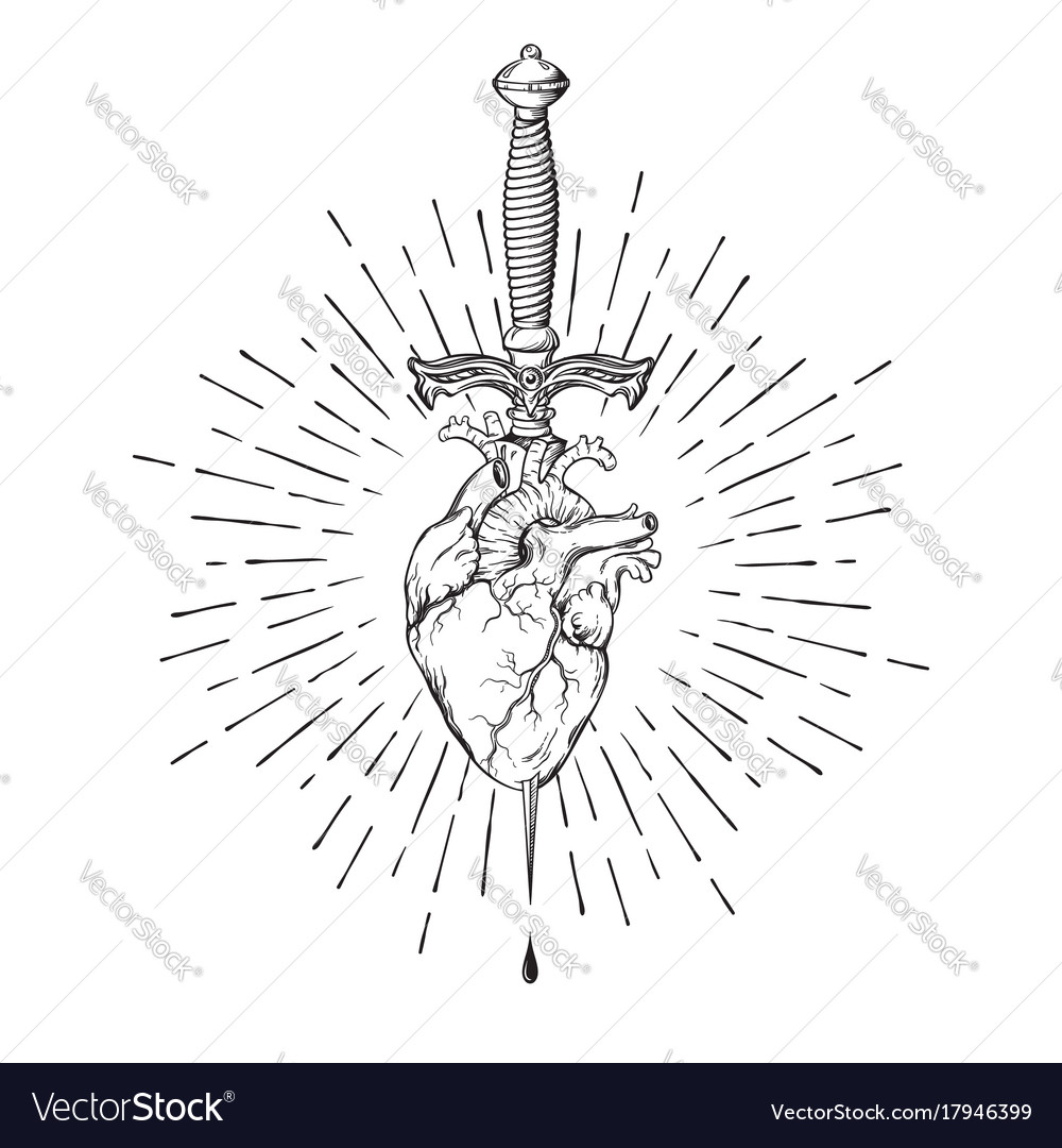 Human heart pierced with ritual dagger