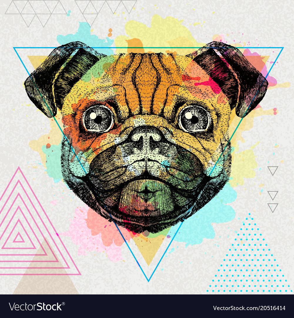 Hipster animal pug-dog on artistic polygon
