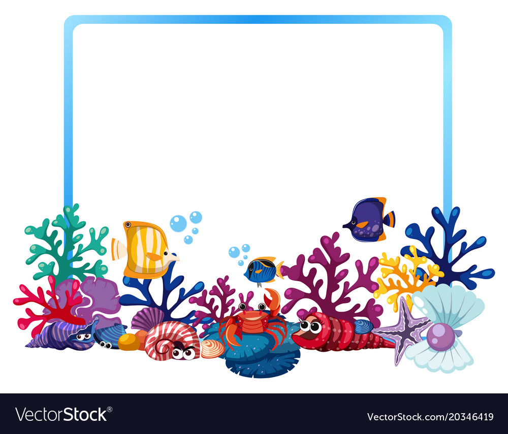 border template with fish and coral reef vector image
