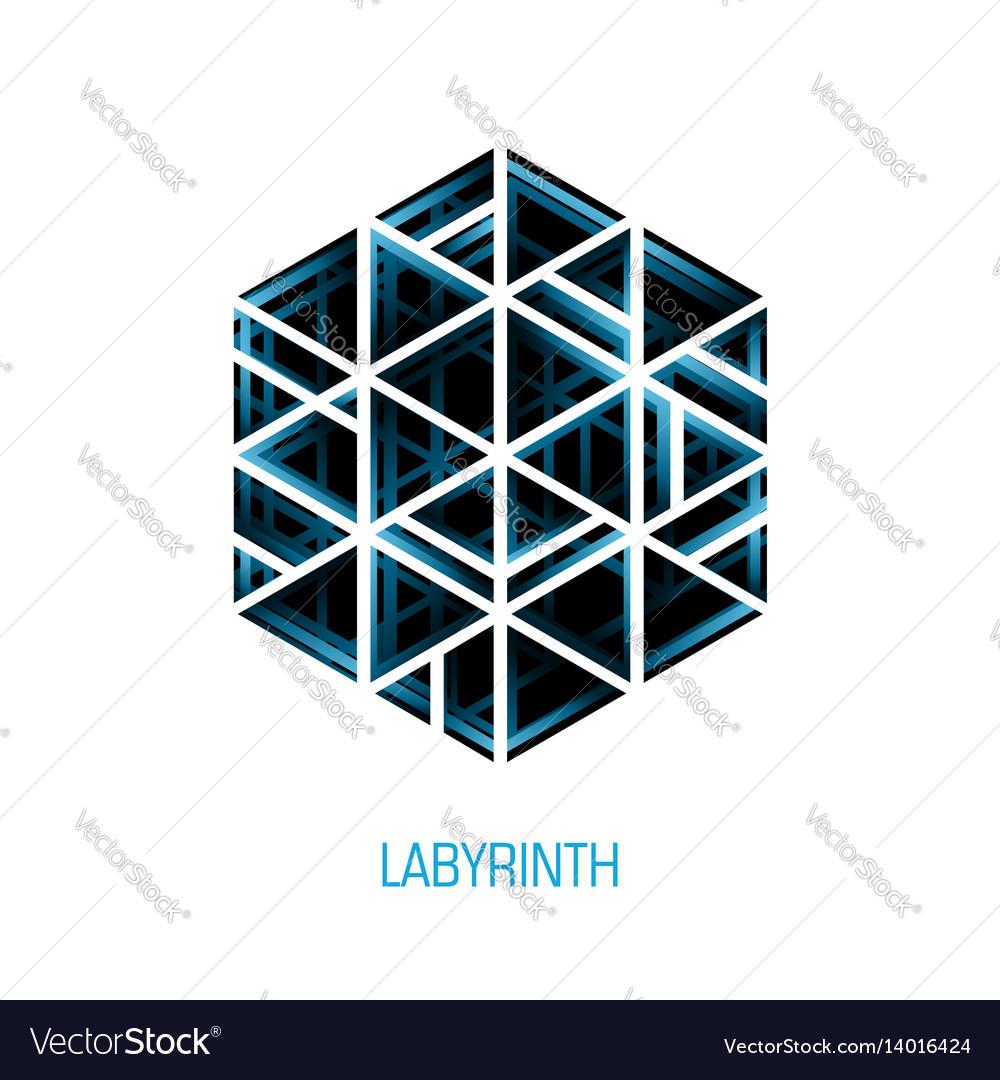 Hexagon volume labyrinth abstract logo