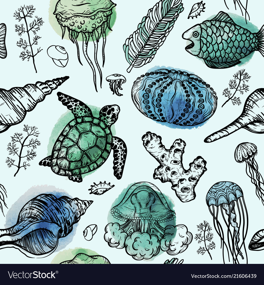 Seamless pattern with sketch of sea shells