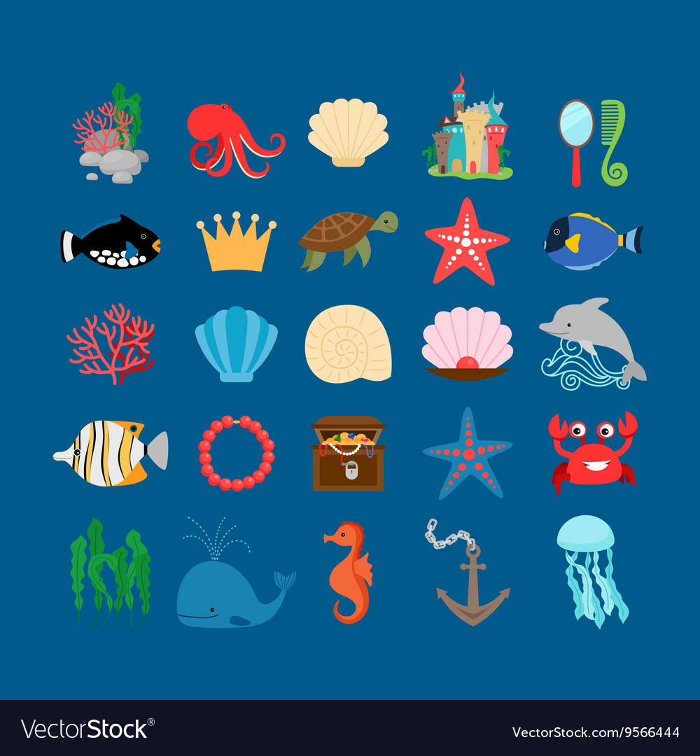 Underwater life and ocean animals
