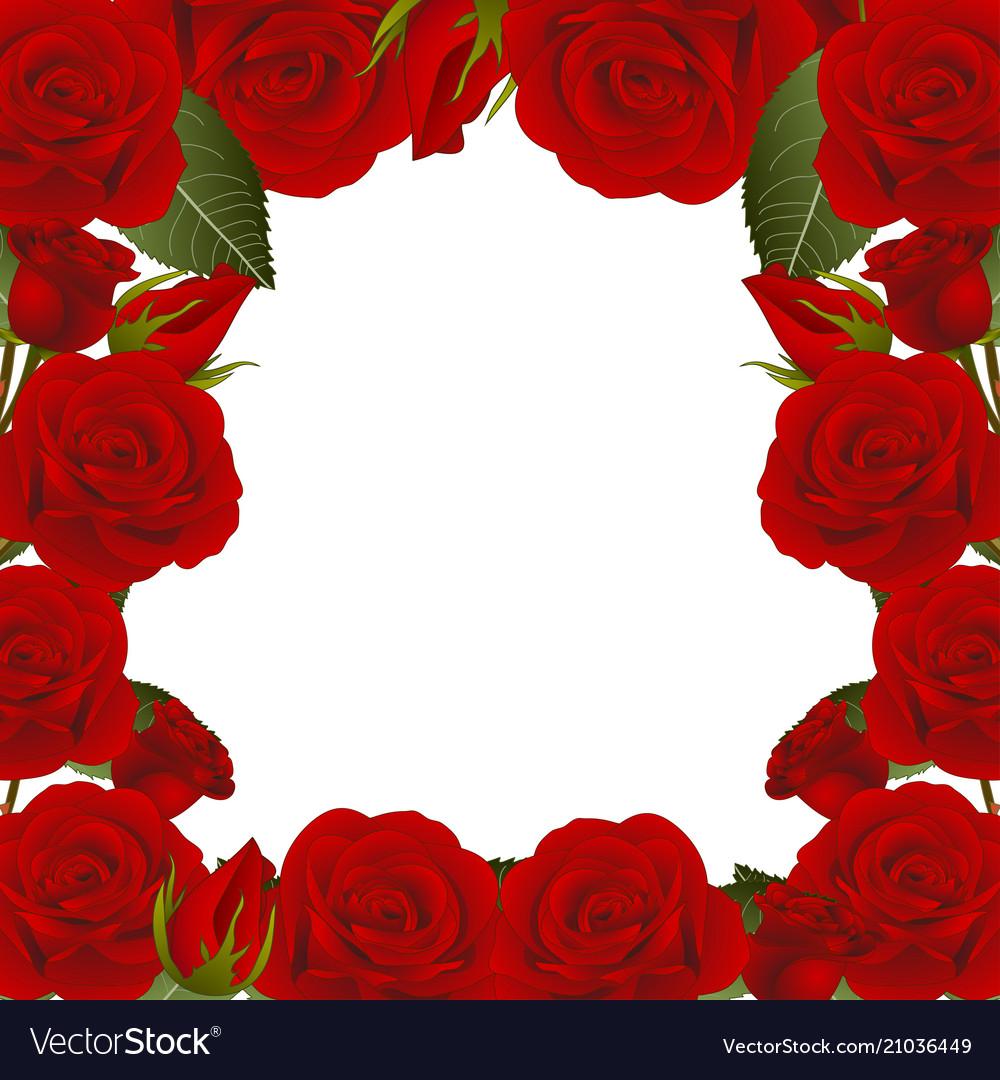 Red rose flower frame border2