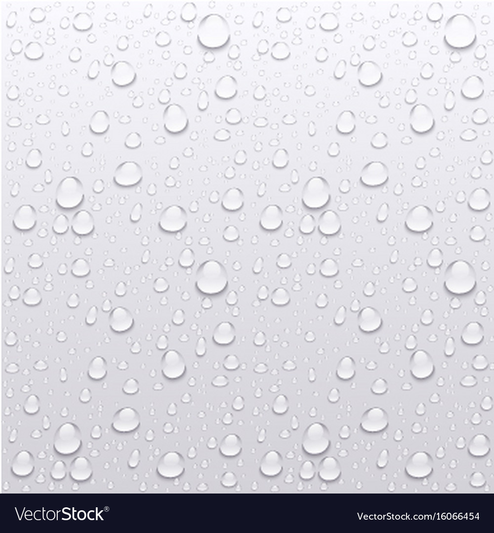 water drops on glass rain drops on clear window vector image