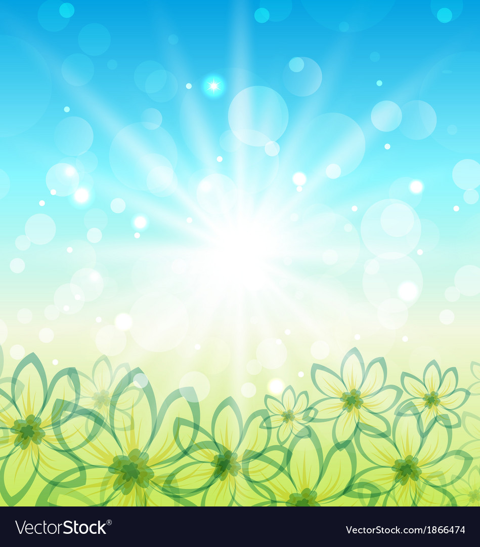 Spring nature background with flowers vector image