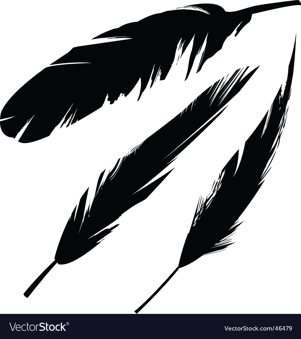 feather royalty free vector image vectorstock rh vectorstock com feather vector freepik feather vector free