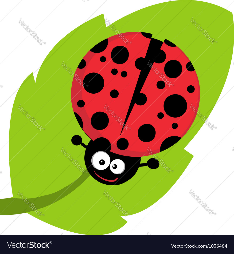 Happy Cartoon Ladybug On A Leaf vector image