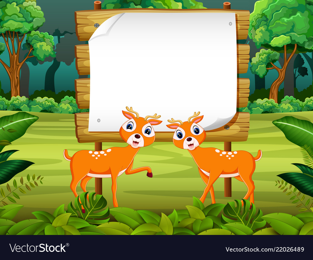Wooden board blank space with two cute dear