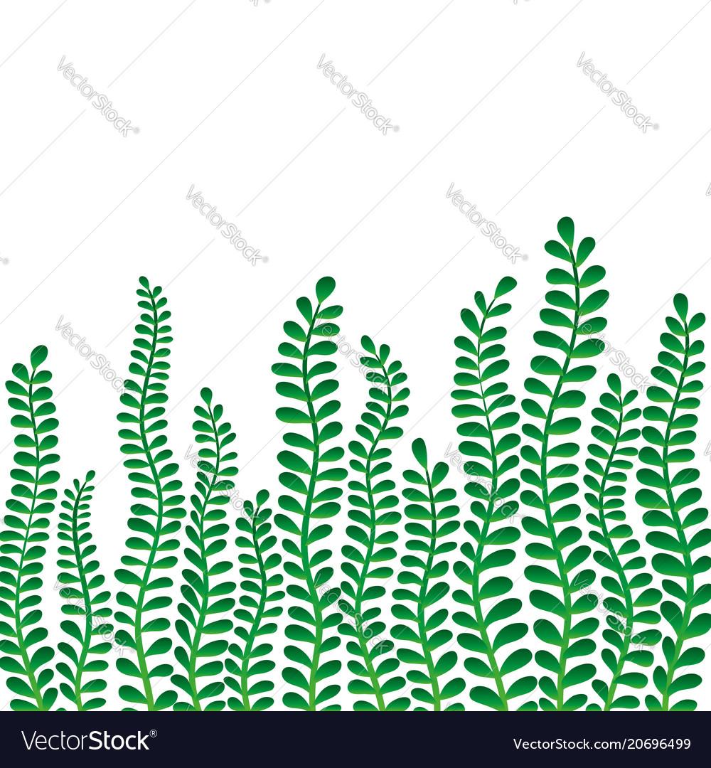 Border frame branch leaves design for holiday vector image
