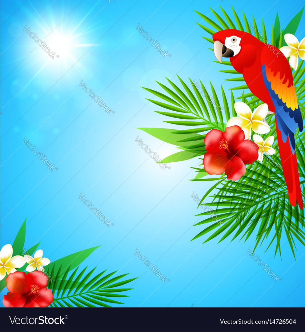 Blue summer background vector image