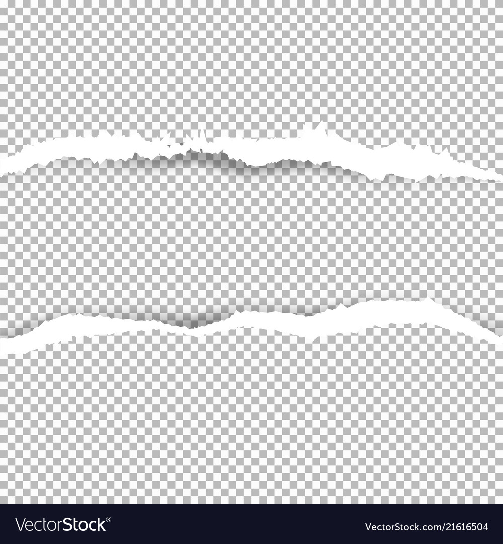 torn paper with ripped edges royalty free vector image