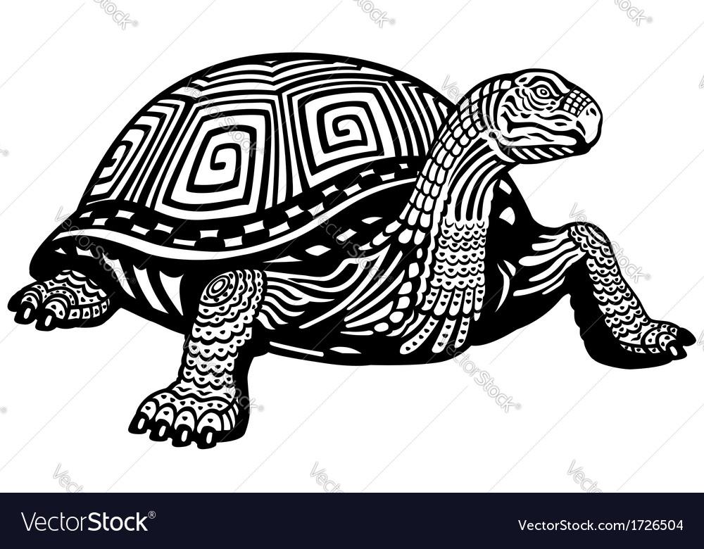 Turtle black white
