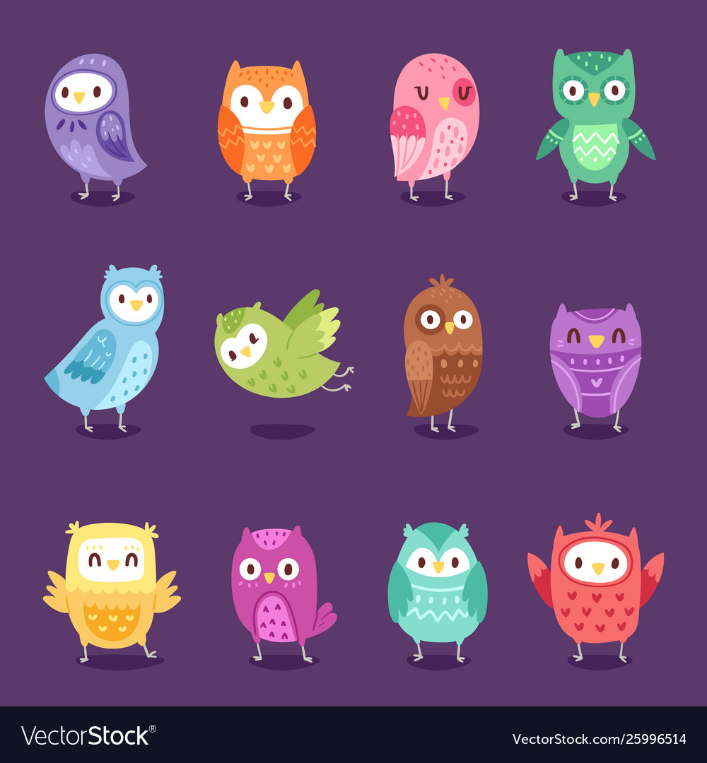 Owls cartoon owlet character kids animal