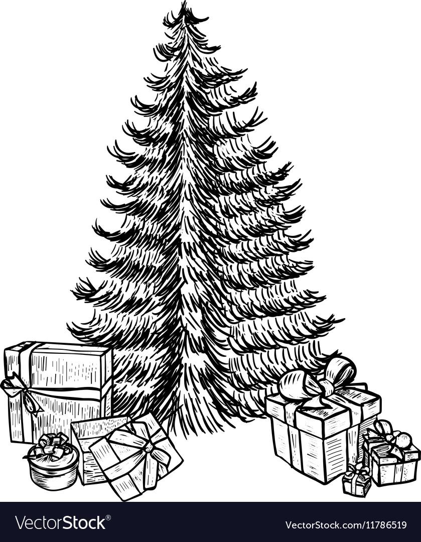 Drawing Christmas Tree Sketch.Hand Drawn Sketch Christmas Tree And Gifts