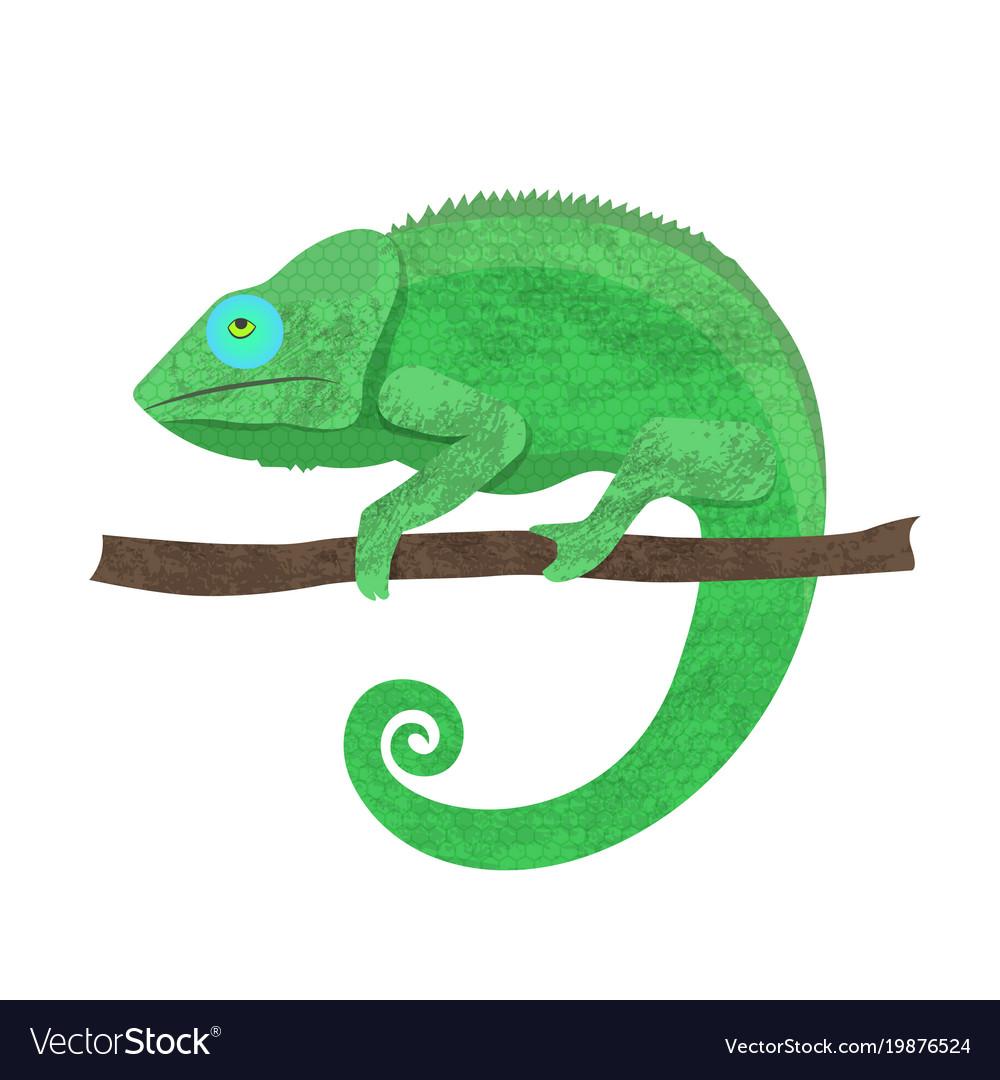 Chameleon icon cartoon of walking